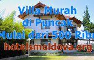 10 Villa Murah di Puncak Dibawah 500 Ribu Ada Kolam Renang Untuk 2 Orang Pasangan Rombongan Keluarga, Harga Sewa Mulai dari Rp 342.369